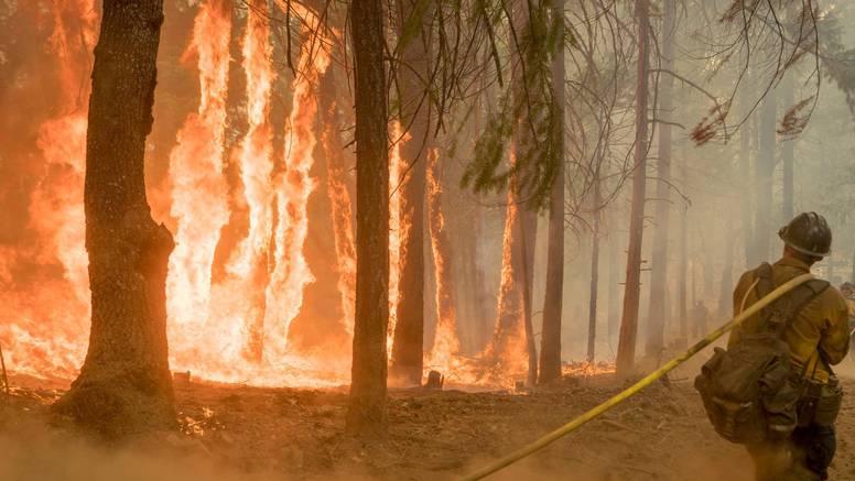 SAD u plamenu: Aktivno više od 100 velikih šumskih požara