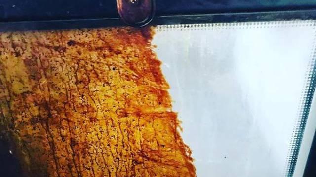 Evo kako očistiti masna i prljava vrata pećnice bez kemikalija
