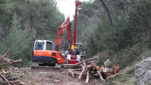 'Ovo na Marjanu je katastrofa! Pa sijeku i skroz zdrava stabla'