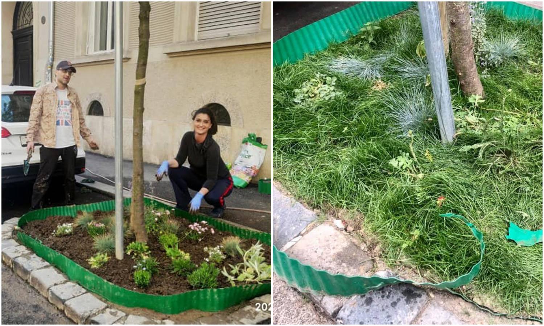 Nije preživio prva pijanstva: Mini vrt iz Preradovićeve koji je dignuo sve na noge je uništen