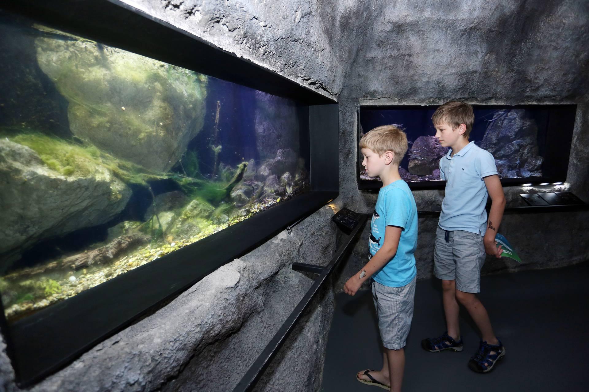 Slatkovodni akvarij Aquatika Karlovac, jedna je od destinacija izletnika