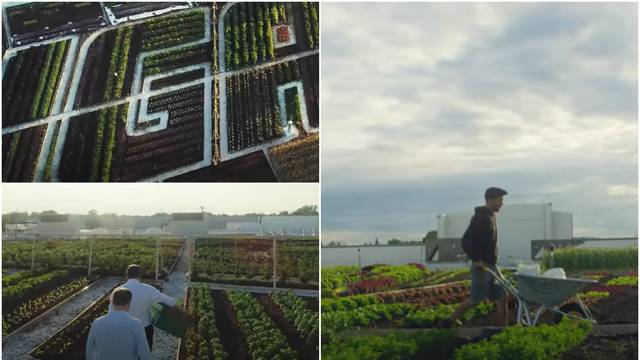 Kanadski supermarket povrće koje prodaje uzgaja na krovu