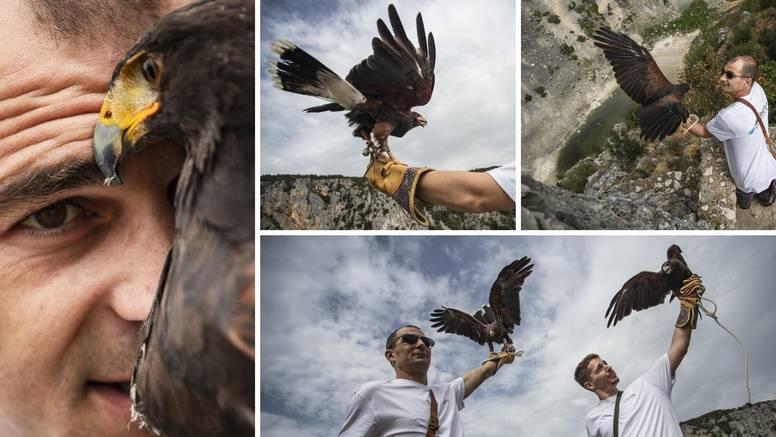Seka i Bea hvatat će agresivne galebove: 'Sve ih interesira, ali nikako ne vole druge ptice'