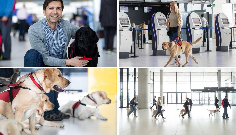 Psi pomagači na obuci prvi put na Zračnoj luci Franjo Tuđman