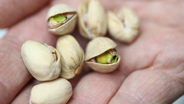 pistacije