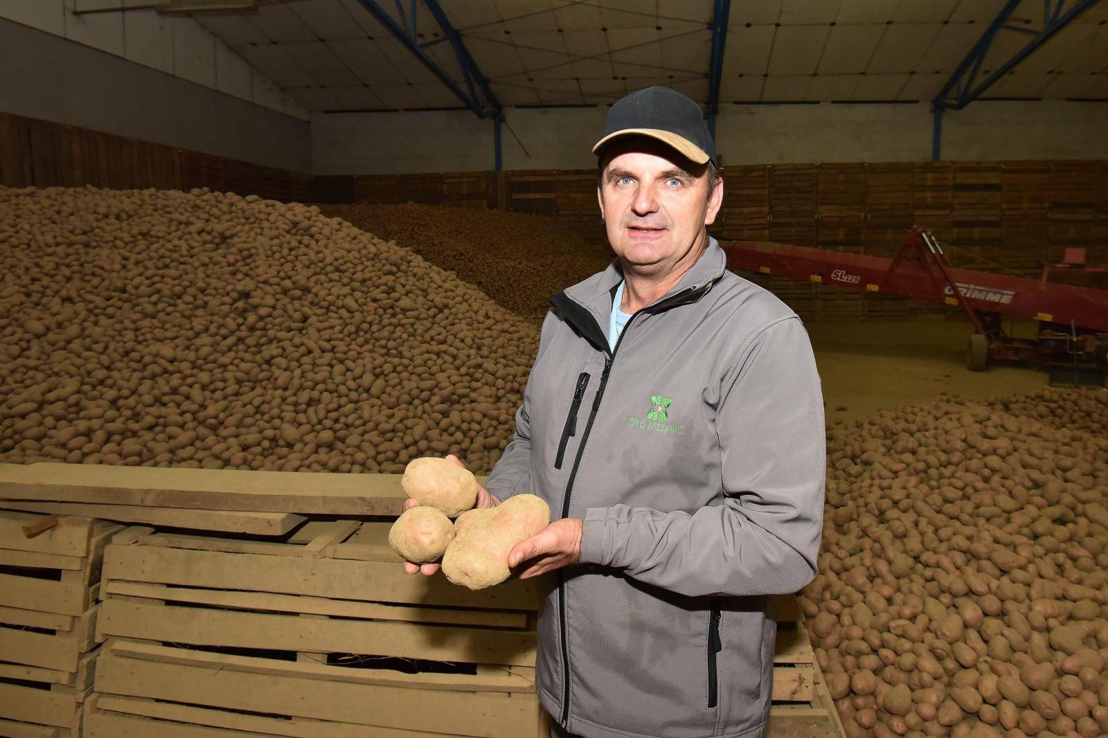 Luda klima: U cijeloj EU ove je godine upola manje krumpira