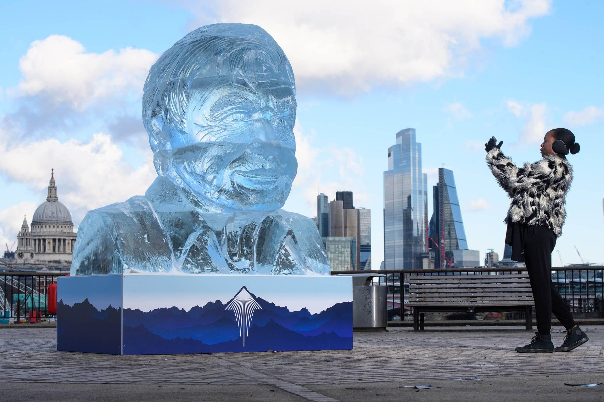 Od dva metra visokog komada leda napravili skulpturu Sir Davida Attenborougha