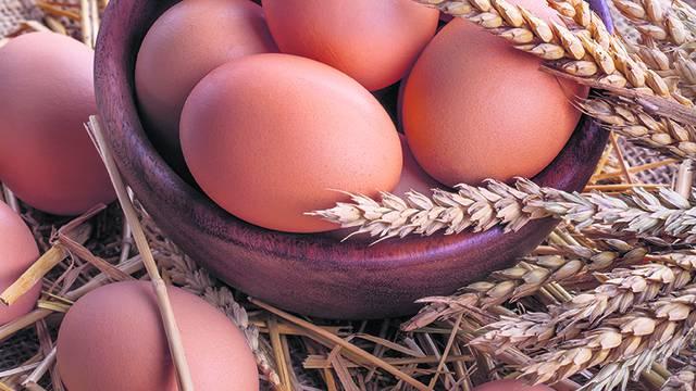 Trikovi: Prije zamrzavanja jaja se mute sa solju, a sir se riba