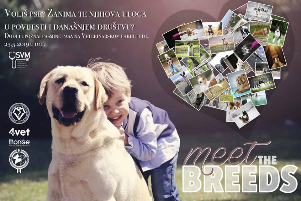 Zabava na Veterini: Dođite i otkrijte tajne psećih pasmina