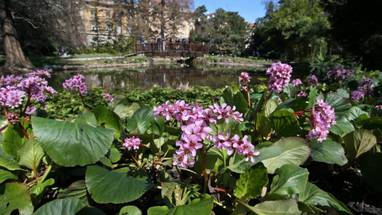 Slijedom Vasih Upita Za Radionice U Botanicki Vrt Pmf A U