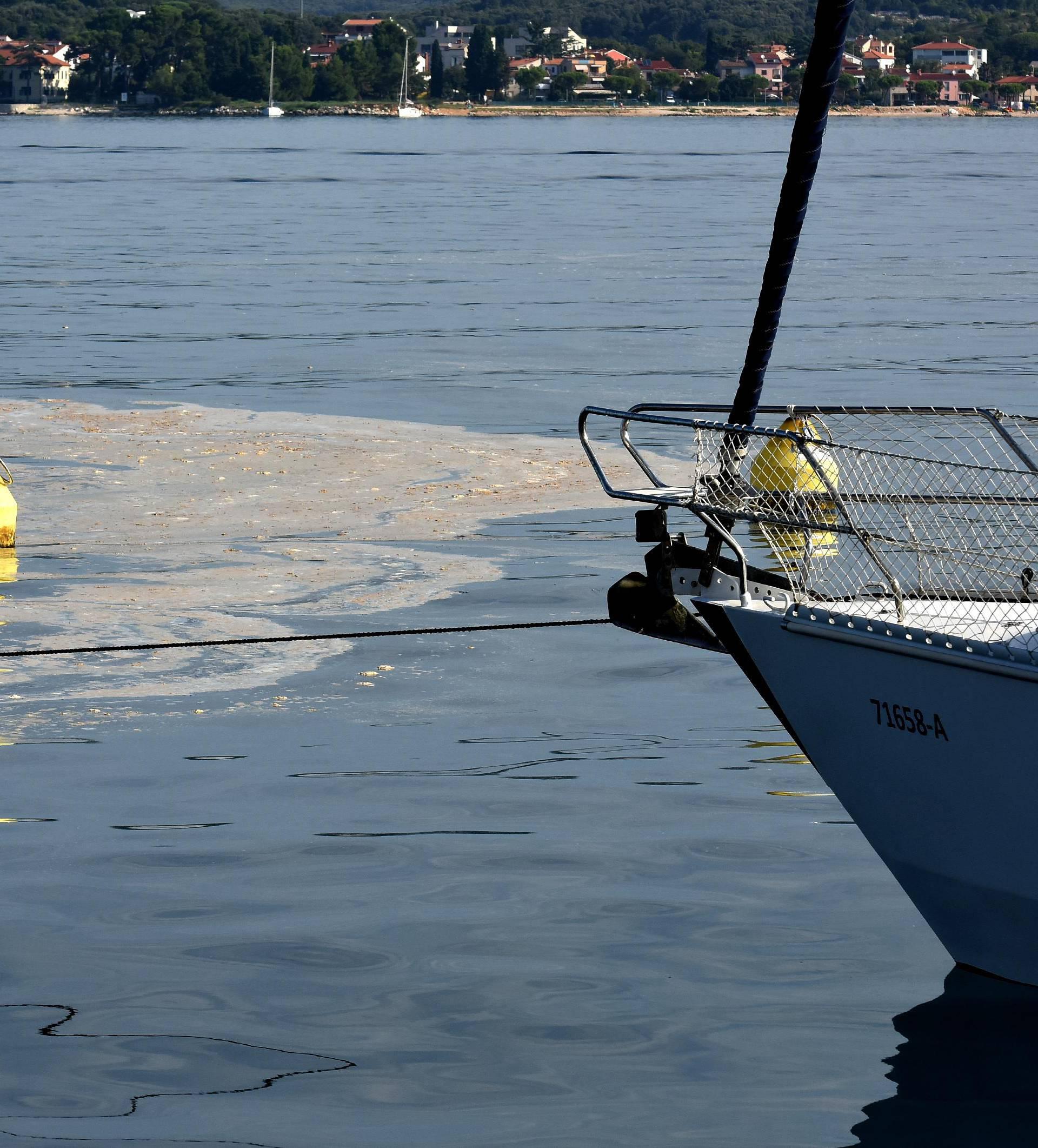 Fekalije u Jadranu: Infekcija se razbukta u samo nekoliko sati