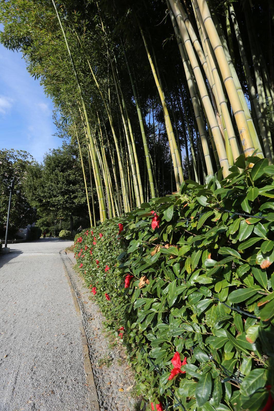 Uoči blagdana već su ukrašeni parkovi u Opatiji