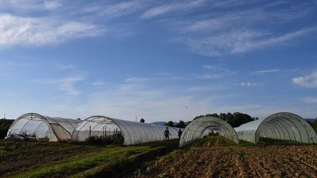 Moratorij na prodaju hrvatskog poljoprivrednog zemljišta produžen za tri godine