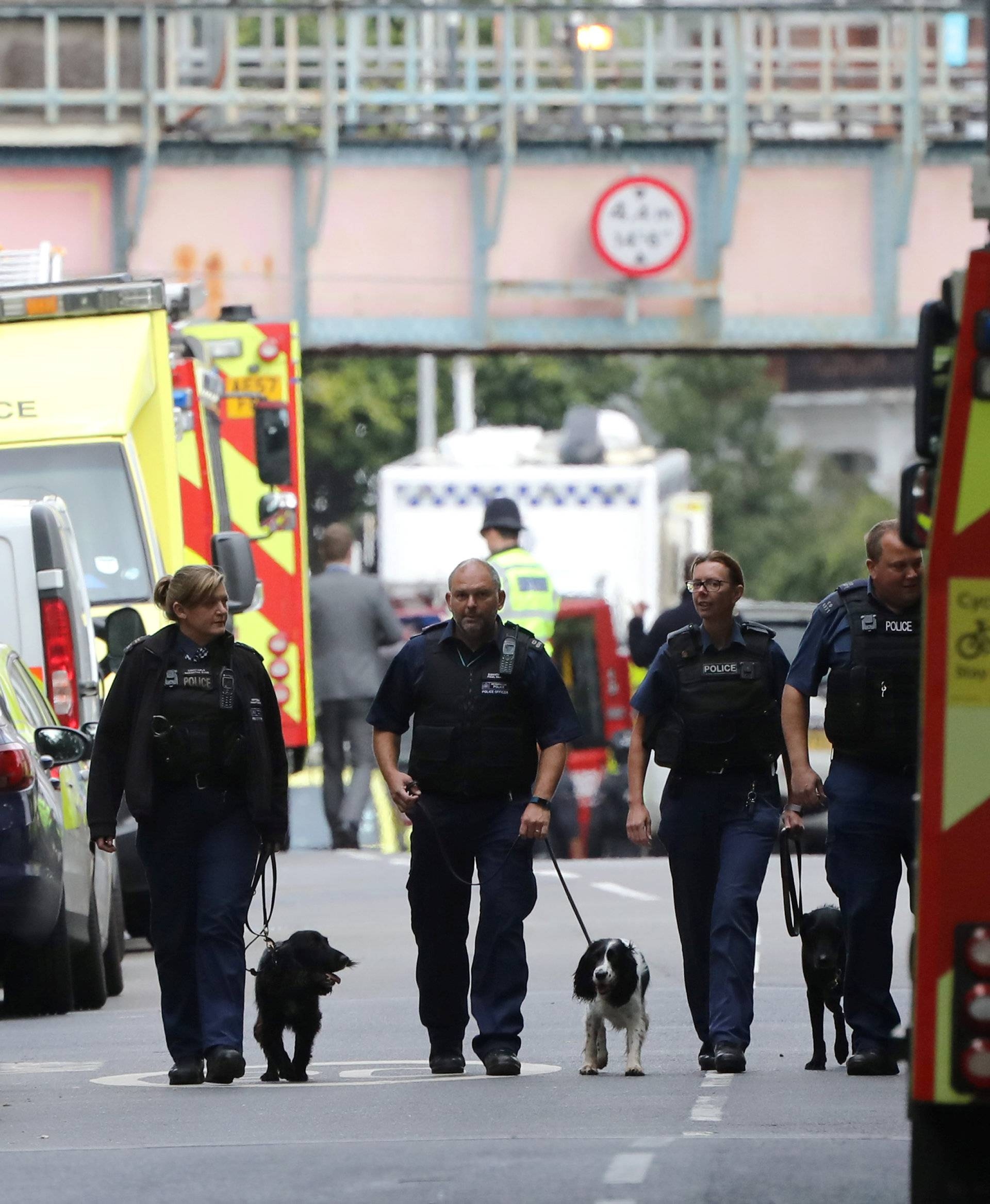 Police officers walk with dogs after an incident at Parsons Green underground station in London