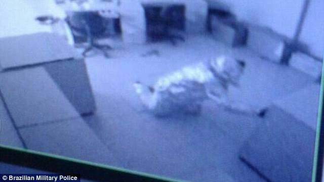 Maštoviti lopovi: Zamotali se u aluminijsku foliju  i prošli alarm