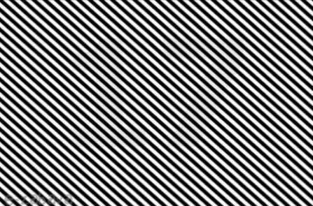 Vrlo mali broj ljudi može vidjeti broj na ovoj slici. Možete li vi?