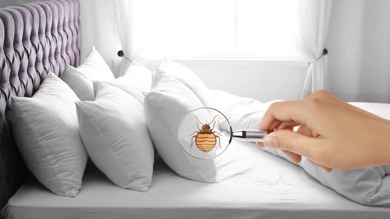 Koliko često perete jastuke? 'Dobra su podloga za razvoj i razmnožavanje bakterija'