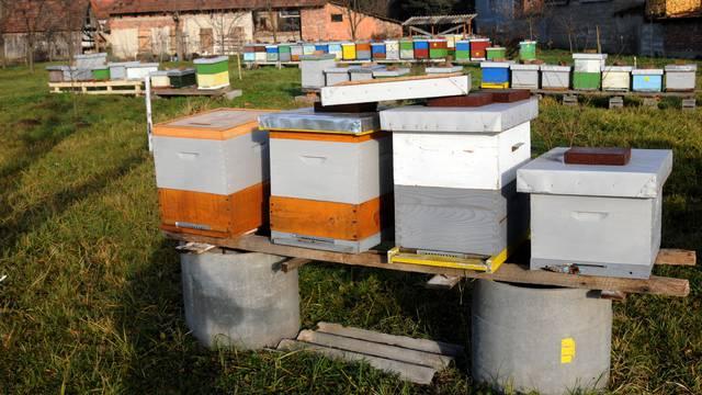 Muškarac (41) krao košnice s pčelama: Šteta 147.000 kuna