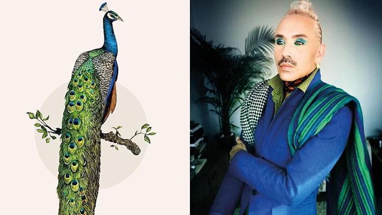 Sa šminkom i odjećom sebe pretvara u ptice koje je nacrtao