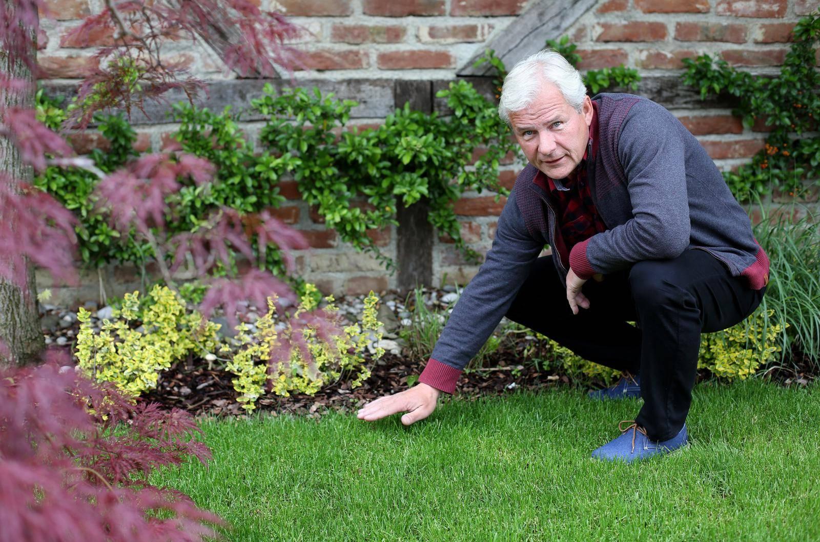 Znamo zašto nam trava kod susjeda uvijek izgleda zelenija