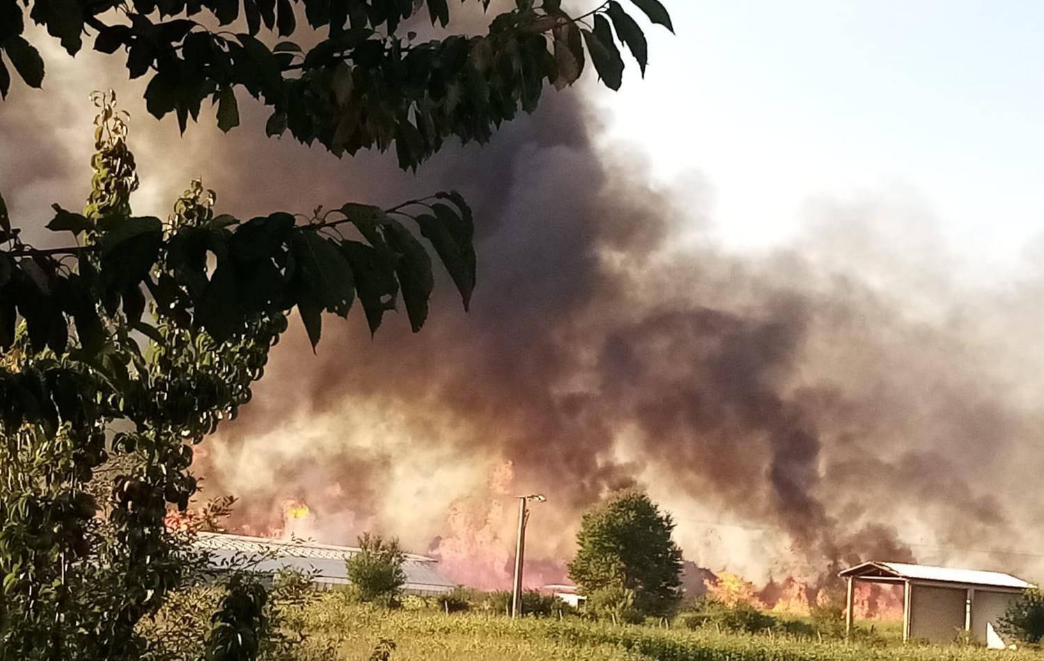 'Vjetar razbuktao vatru, došla je do ceste, a dim skroz do kuća'