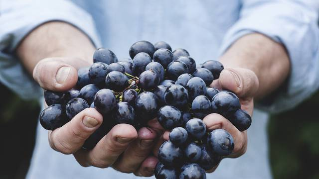 Iskoristite sezonu i očistite tijelo od toksina pomoću crnog grožđa