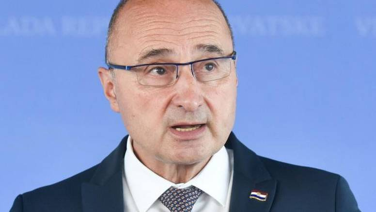 Kome treba Domovinski pokret kada imamo Plenkovićev HDZ?