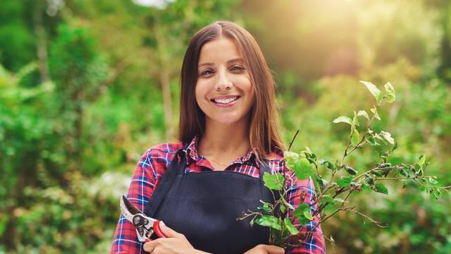 Mokro tlo: Nakon obilne kiše u vrt se odlazi po salatu i rikolu