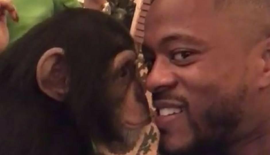 Kralj društvenih mreža: Evra se na večeri ljubio s majmunom