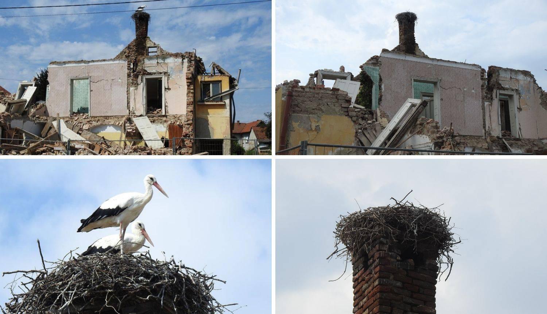 Rode su otišle: Vlasnici sada mogu srušiti derutnu kuću...