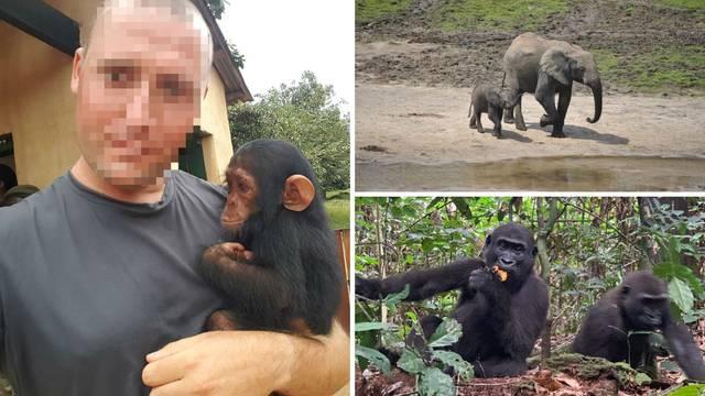 Čuvar džungle: Branim gorile i lavove od opakih krijumčara