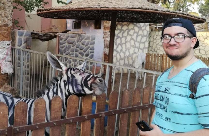 Nešto je jaaaako čudno ovdje:  ZOO tvrdi da su ovo - zebre?!