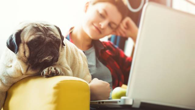 Da bi bilo bolje na poslu: Kada i koliko pauza bi trebali uzimati?