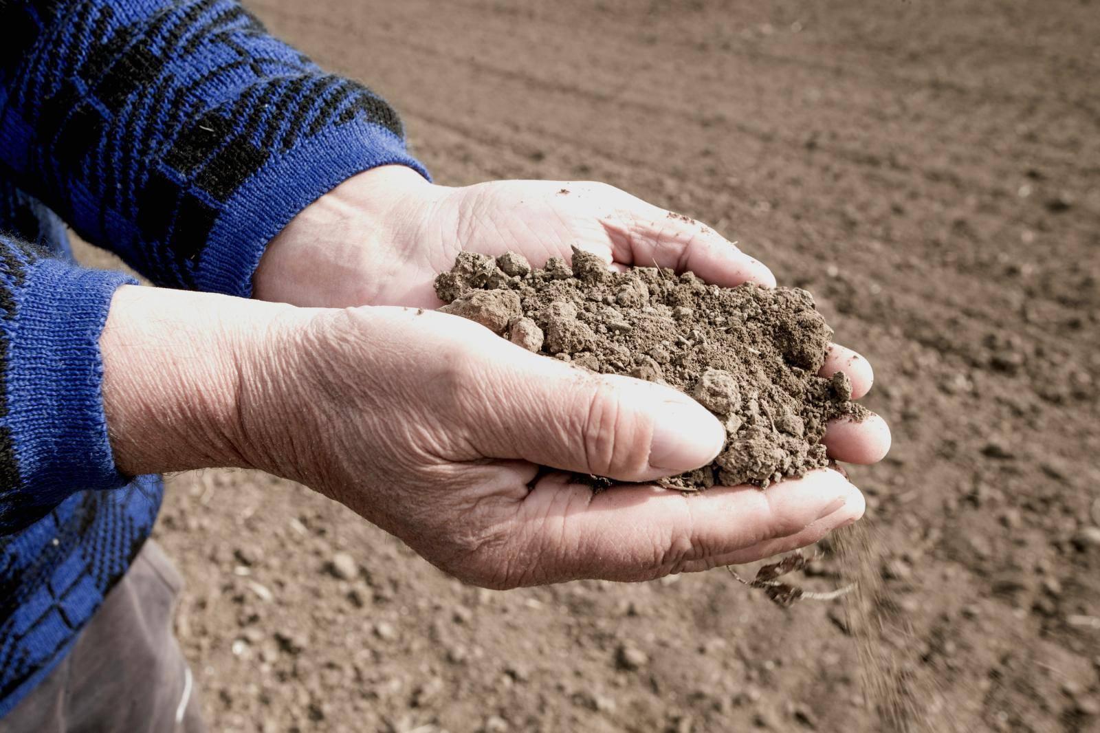 Velika suša na području Slavonije i Baranje