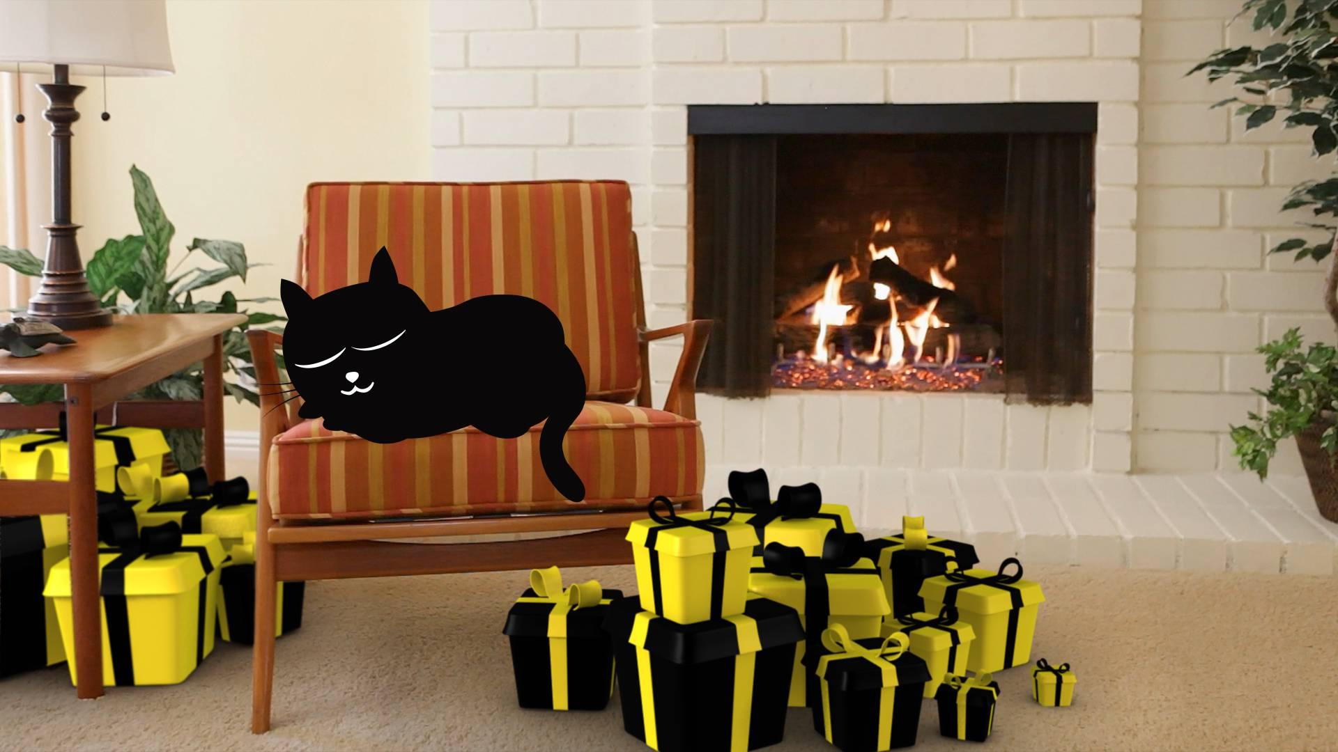 Donosi li crna mačka doista nesreću?