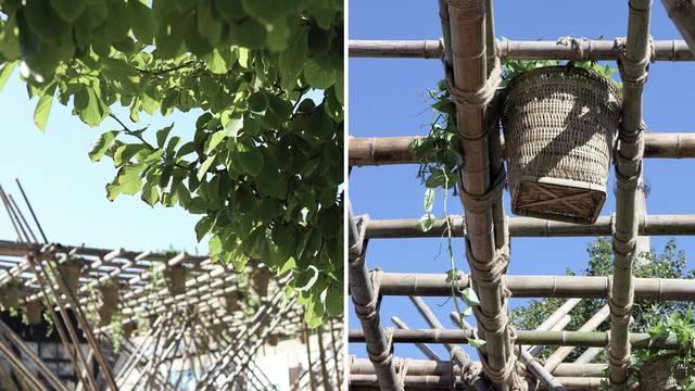Bambus: Građevinski materijal budućnosti i njegove prednosti
