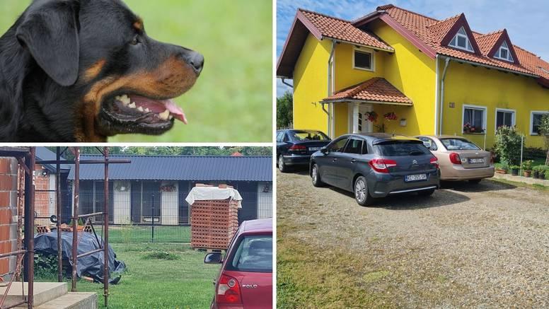 Tri psa je napala i izgrizla kad ih je došla nahraniti: 'Ulicom se čuo krik koji ledi krv u žilama'