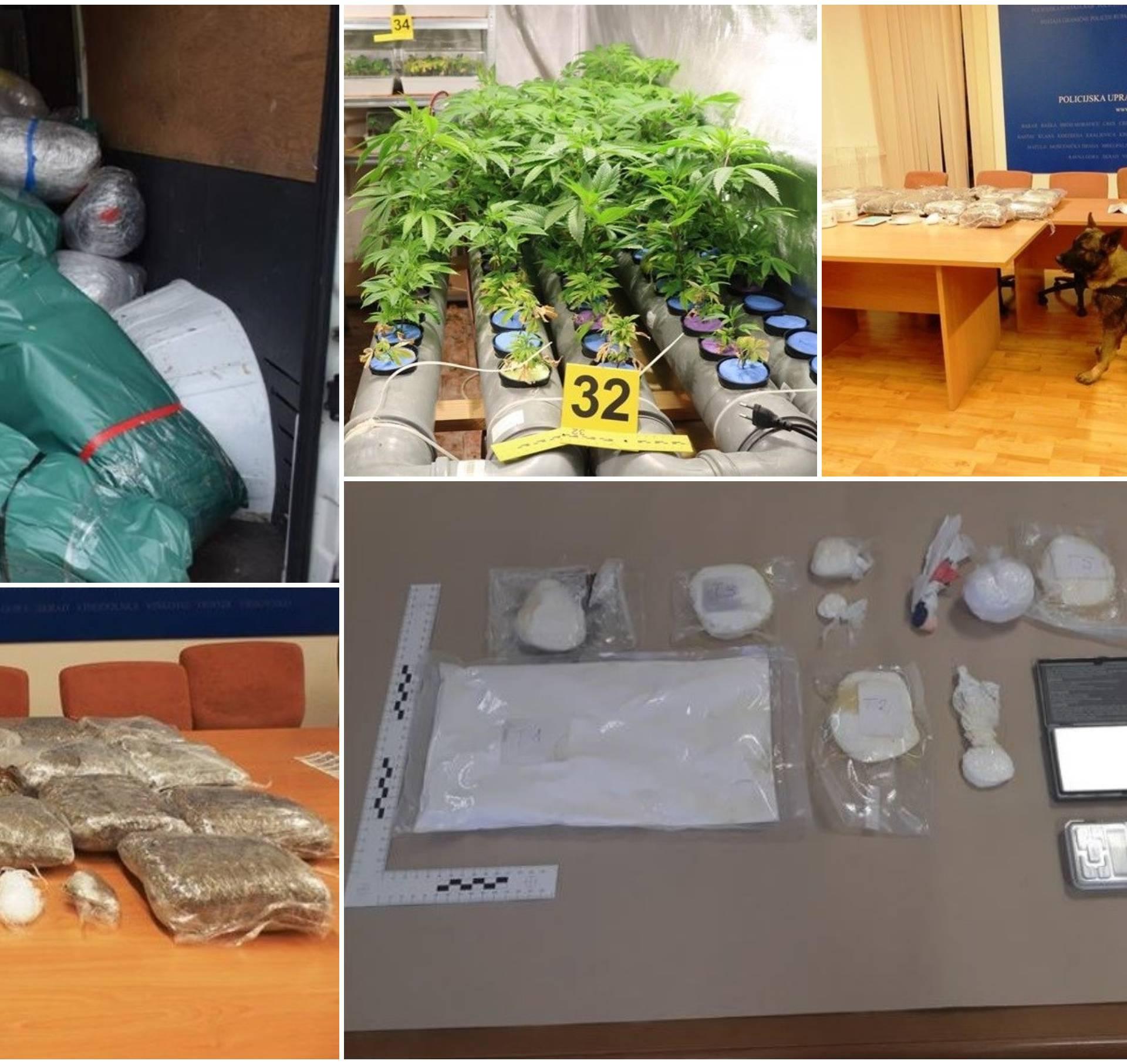 Pao lanac dilera: Policija našla šest laboratorija za uzgoj trave