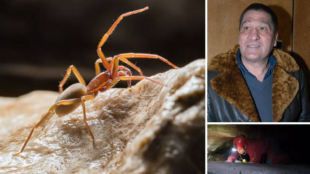 Španjolci htjeli da se misteriozni pauk iz podzemlja Biokova zove Popaj. Ali on je - Mate Parlov!