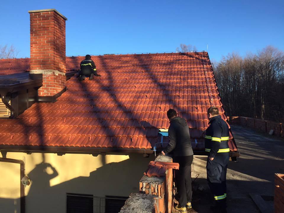 Mačka zapela u krovu 10 dana: Izmamili su je van parizerom