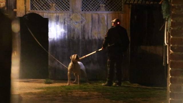 Pas je dogo argentino: 'Ugrizao je dječaka (15) za lice i ruku...'