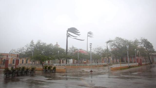 Trees sway in the wind at the main square as Hurricane Irma passes by Remedios