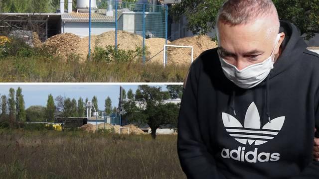 Firma Dragana Kovačevića je u tajnosti sadila plantažu 'trave'