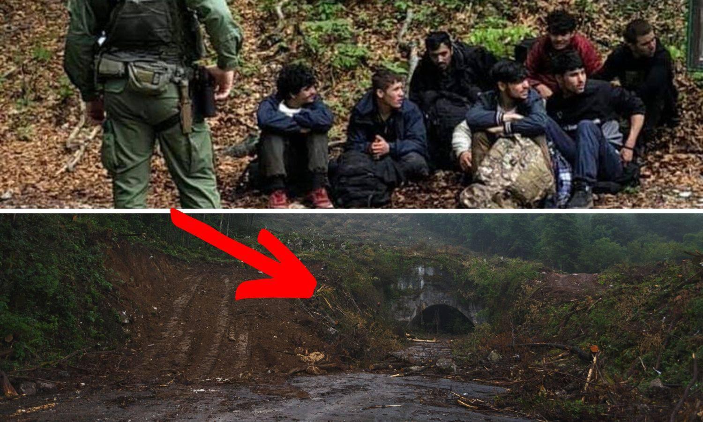 Zbog migranata sjeku šumu i stavljaju termovizijske kamere
