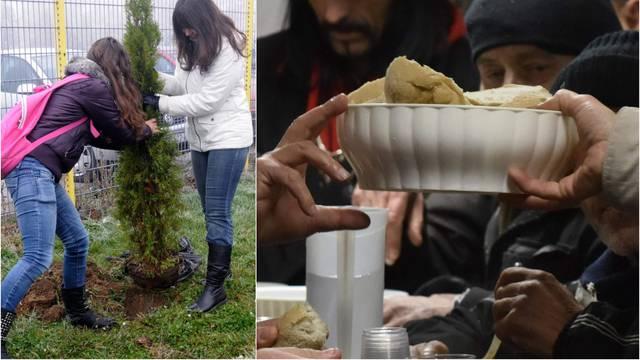 'Posadi drvo, ali umri od gladi': Ovo su nam opcije i nije dobro!