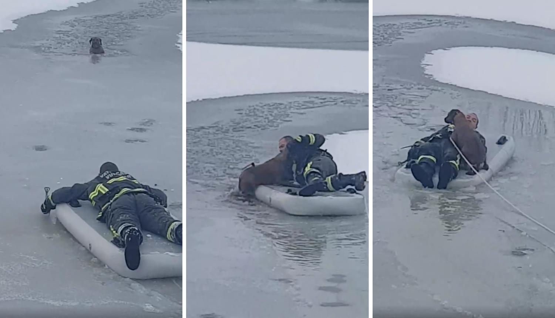 Propao kroz led: Vatrogasac u Vukovaru junački izvukao psa
