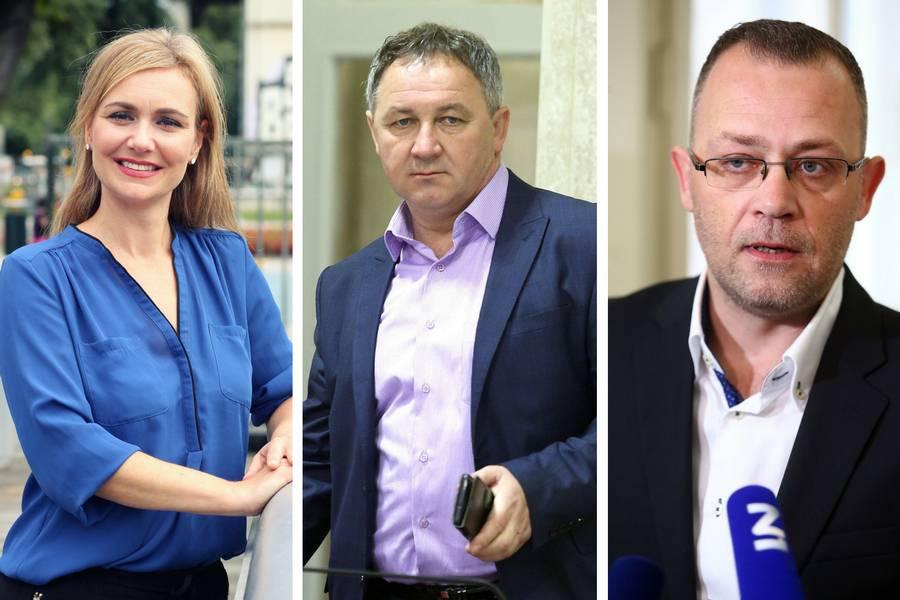 Esih, Culej i Hasanbegović: Privukli su birače  pravaša...