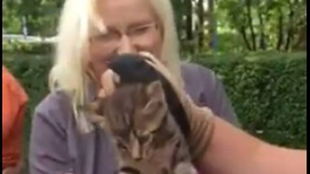 Mačić u Zaprešiću zaglavio u cijevi, spasio ga je policajac