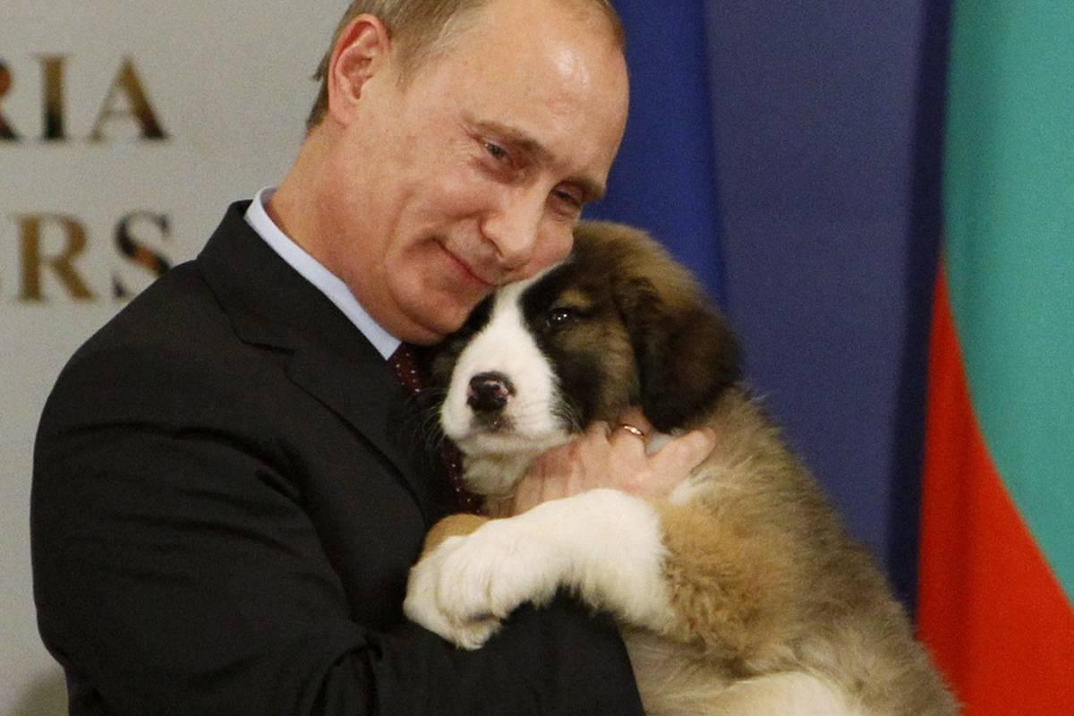 Putin dobio čupavog štenca i rastopio se, ljubio ga je i mazio | 24sata