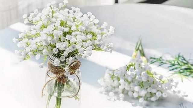 Ovo proljetno cvijeće postalo je pravi hit: Upotpunit će vaš dom!